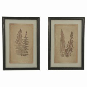 Botanical Fern Prints with Black Wooden Frames V1